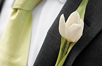 boda verde 14