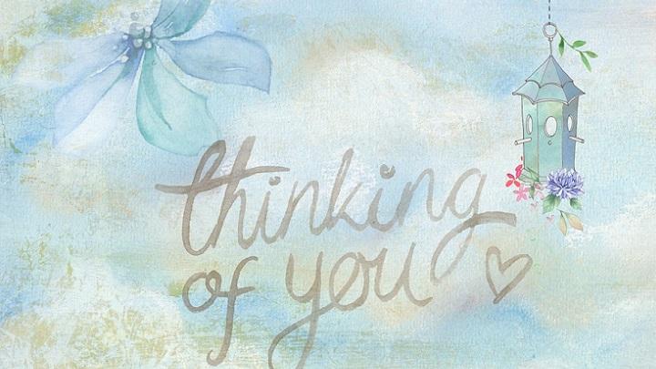 Cuatro Frases De Amor Para Regalar Hoy A Tu Pareja