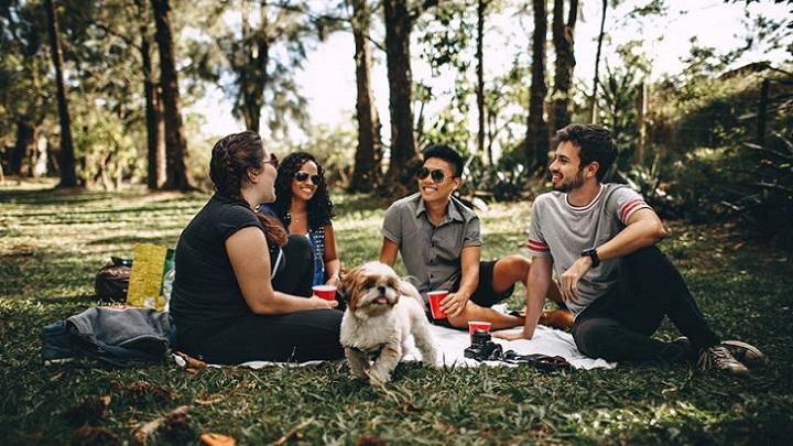 amigos-en-un-picnic