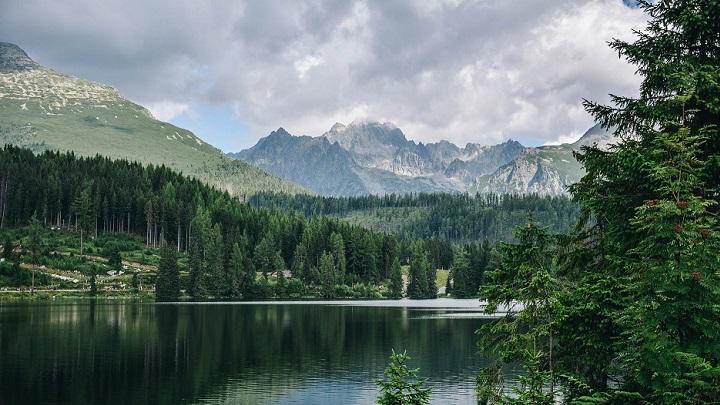 paisaje-verde-de-naturaleza