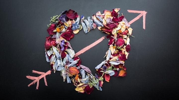 flores-formando-el-dibujo-de-un-corazon